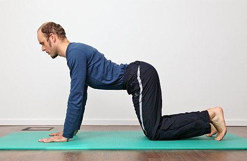 Rückenschmerzen: Ursachen, Diagnose, Selbsthilfe und..