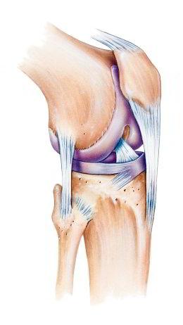Knieschmerzen: Das hilft gegen die Beschwerden