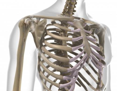 Schulterfragebogentest
